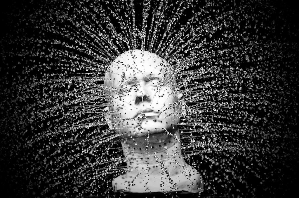 Reimprinting Toxic Beliefs – Creating a Happy Life